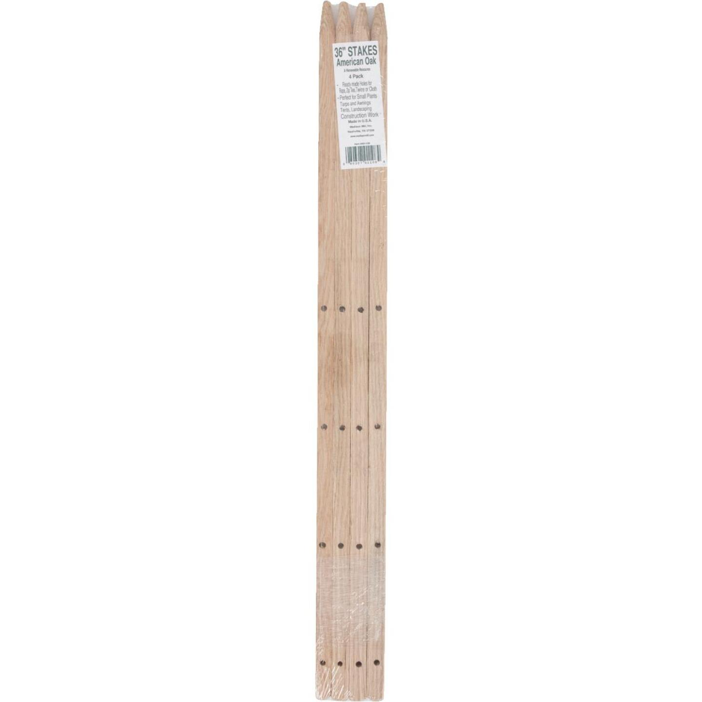 Madison Mill 36 In. Oak Wood Plant Stake (4-Pack) Image 2